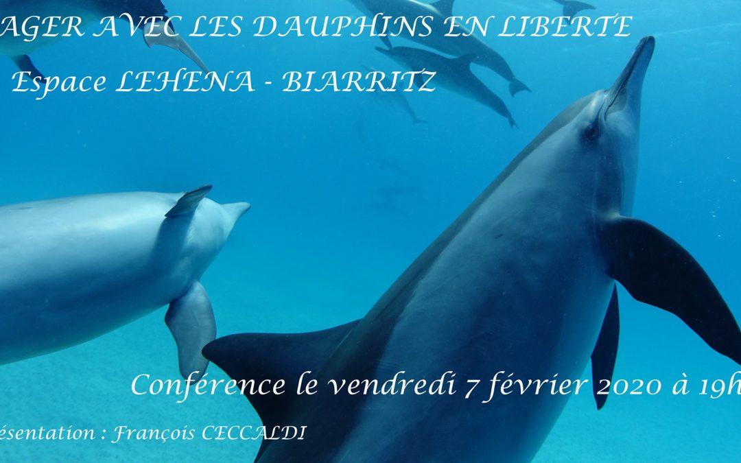 Conférence Présentation : Nager avec les dauphins en liberté – Biarritz